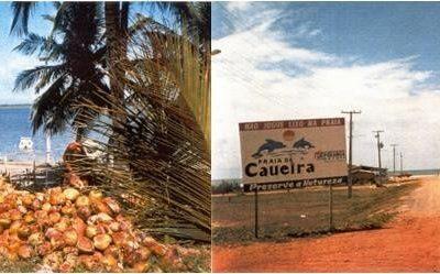 Estudo de impacto ambiental – EIA/RIMA – da rodovia SE-100 Sul